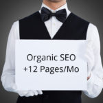 Organic SEO – 12 New Pages / Month