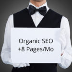Organic SEO – 8 New Pages / Month