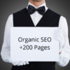 Organic SEO – 200 New Pages